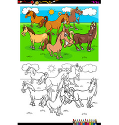 horses farm animal characters group color book vector image