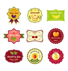 Natural Jam Colorful Labels vector