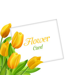 Nature flower card with tulips invitation for vector