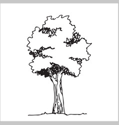 Tree sketcharchitect hand drawn landscape element vector