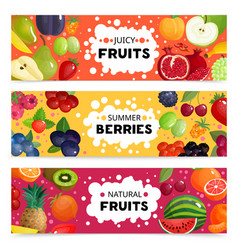 fruits and berries banners vector image vector image