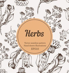 Seamless herb background vector