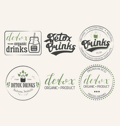 collection of six detox drinks vector image vector image