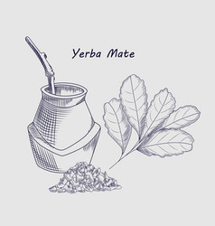 Concept yerba mate drink isolated on background vector