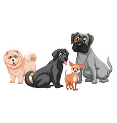 cute animal dog group isolated on white background vector image