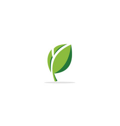 green leaf eco organic logo vector image