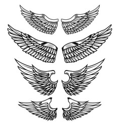 set of the wings isolated on white background vector image