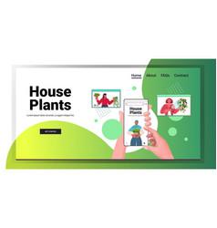 set women taking care houseplants mix race vector image