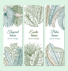 Tropical plants with different leaves and branches vector