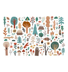 Big collection set hand drawn woodland flora vector