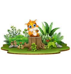 Cartoon happy baby fox sitting on tree stump with vector
