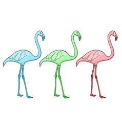 flamingo color vector image