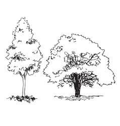 Set of hand drawn architect tree graphic template vector