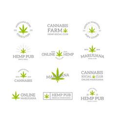 set retro vintage marijuana leaf hemp vector image