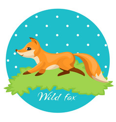 wild fox colorful night hunter on vector image