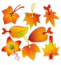 autumn label vector image vector image
