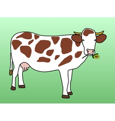 Cow grazing flower vector image