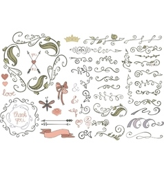 Doodles borderbrushesdecorColored Floral vector image vector image