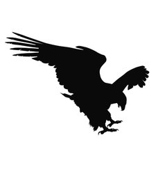 eagle hunting vector image