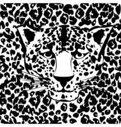 Seamless animal fur pattern vector image vector image
