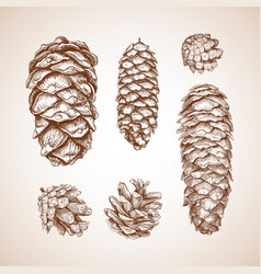 a set of cones sketch vector image