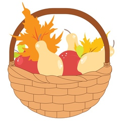 Basket of Pears and Apples vector