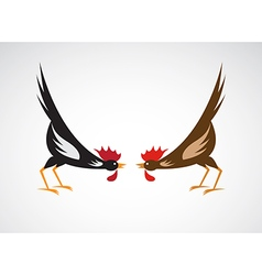 Cock fighting vector image