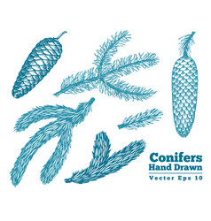 pine cones and needles hand drawn branches set vector image
