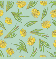 Seamless pattern with a plant acorus calamus vector