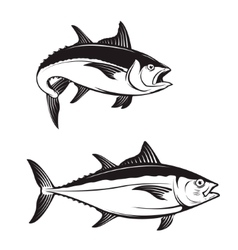 Tuna fish icons vector