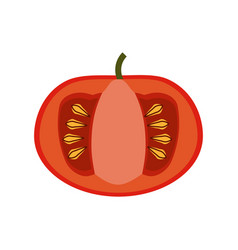tomatoe vegetable natural vector image vector image