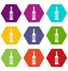 bottle of vodka icon set color hexahedron vector image