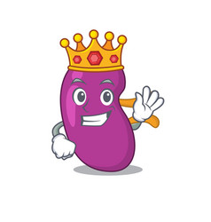 A wise king kidney mascot design style vector