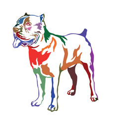 colorful decorative standing portrait dog cane vector image