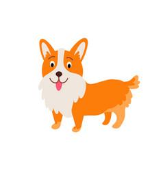 cute animals - corgi dog vector image