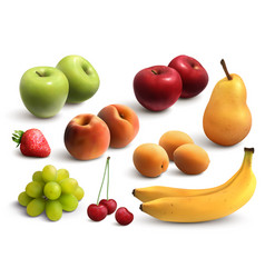 fruits realistic set vector image
