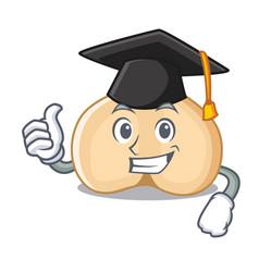 Graduation chickpeas character cartoon style vector