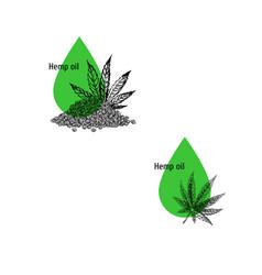 hemp oil icon set hand drawn cannabis sketch vector image
