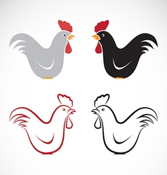 image of an chicken design vector image