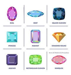 Jewelry gems cuts infographics vector image