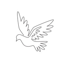one single line drawing cute elegant fly dove vector image