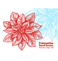 Poinsettia hand drawn red flowers vector