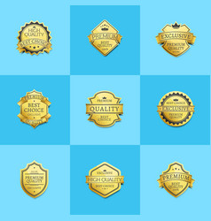set of premium quality best gold labels guarantee vector image