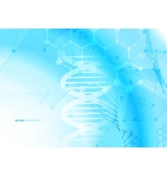 DNA molecule structure background vector image