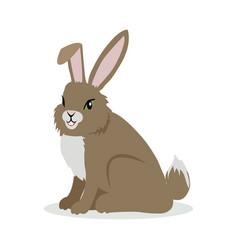 hare cartoon in flat design vector image vector image