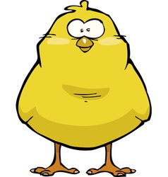Little chicken vector image vector image