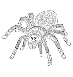 adult coloring page with halloween nasty spider vector image