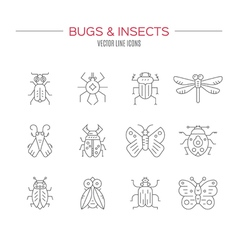 Bugs Icon Collection vector