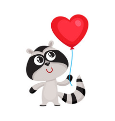 cute and funny raccoon holding red heart shaped vector image