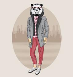 Fashion panda portrait vector